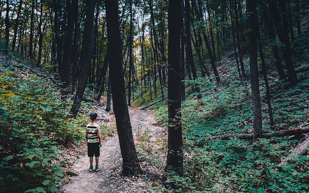 Excursiones por la naturaleza cerca de Zaragoza con niños