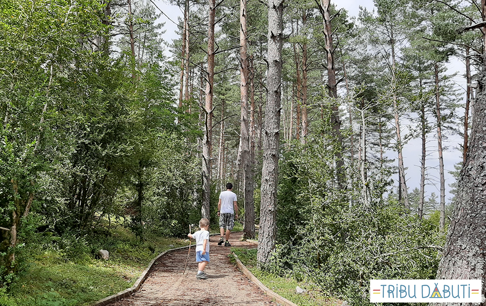 El Bosque de Pegá: una excursión con niños cerca de Benasque