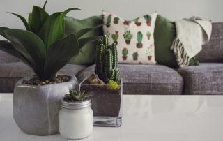 Cambios que puedes hacer en tu casa gastando poco dinero